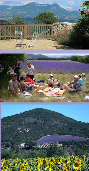 Impressions of the Haute Provence